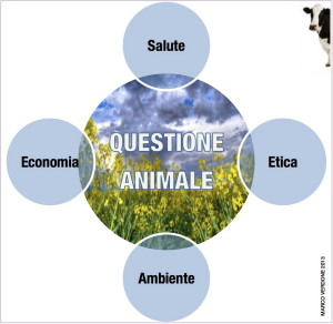 Questione animale_schema